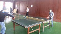 тенис на маса - Професионална гимназия по туризъм Кюстендил